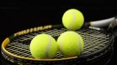 Открытый чемпионат Австралии по теннису 2013